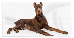 Red Doberman Pinscher Dog Lying Profile Bath Towel