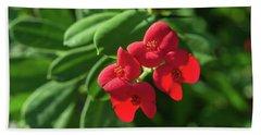 Red Euphorbia Hand Towel