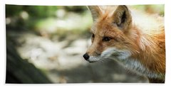 Red Fox Hand Towel by Lisa L Silva