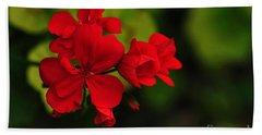 Red Geranium Hand Towel by Kaye Menner