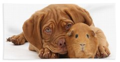 Red Guinea Pig And Dogue De Bordeaux Bath Towel