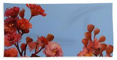 Red Gum Blossoms Australian Flowers Oil Painting Bath Towel by Chris Hobel