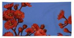 Red Gum Blossoms Hand Towel