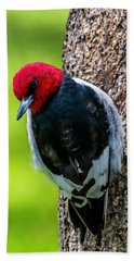 Red-headed Woodpecker Bath Towel