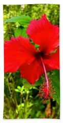 Red Hibiscus In Puna Hand Towel