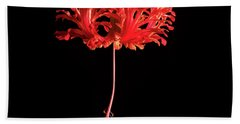 Red Hibiscus Schizopetalus On Black Hand Towel