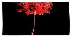 Red Hibiscus Schizopetalus On Black Bath Towel