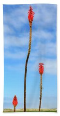 Hand Towel featuring the photograph Red Hot Pokers by James Eddy