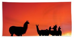 Red Llama Sunset 2 Bath Towel