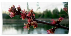 Hand Towel featuring the photograph Red Maple Buds At Dawn by Kent Lorentzen