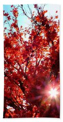 Bath Towel featuring the photograph Red Maple Burst by Wendy McKennon