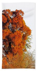 Red-orange Fall Tree Bath Towel