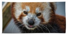 Red Panda Portrait Bath Towel