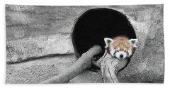 Red Panda Sleeping Hand Towel