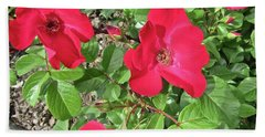 Hand Towel featuring the photograph Red Roses by Stephanie Moore