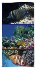 Red Sea Collage Hand Towel