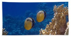 Red Sea Exquisite Butterflyfish  Hand Towel