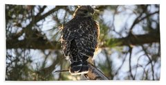 Red Shouldered Hawk Fledgling Bath Towel