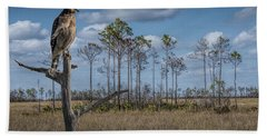 Red Shouldered Hawk In The Florida Everglades Hand Towel