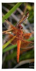 Red Skimmer Dragonfly 5 Bath Towel