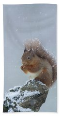 Red Squirrel In A Blizzard Hand Towel