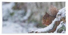 Red Squirrel On Snowy Stump Bath Towel