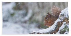Red Squirrel On Snowy Stump Bath Towel