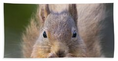 Red Squirrel - Scottish Highlands #28 Bath Towel