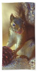 Red Squirrel With Pine Cone Hand Towel
