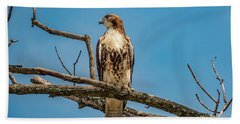 Red Tail Hawk Perched Bath Towel