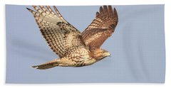 Red Tailed Hawk 20100101-1 Hand Towel