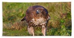 Red-tailed Hawk Hunting Bugs Bath Towel