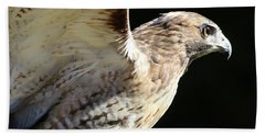 Red-tailed Hawk In Profile Bath Towel