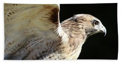 Red-tailed Hawk In Profile Hand Towel