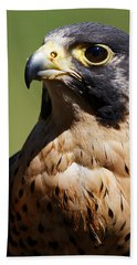 Peregrine Falcon Bath Towel
