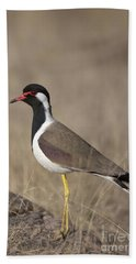 Red-wattled Lapwing Hand Towel