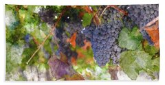 Red Wine Grapes On The Vine In Wine Country Hand Towel
