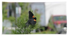Hand Towel featuring the photograph Red-winged Blackbird by Robert Banach