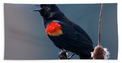 Hand Towel featuring the photograph Red-winged Blackbird Singing by Sharon Talson