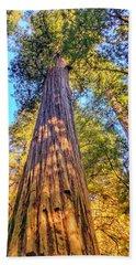Redwood Hand Towel