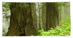 Redwoods In The Fog Hand Towel