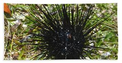 Reef Life - Sea Urchin 1 Bath Towel
