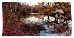 Hand Towel featuring the photograph Reflections On A Winter Day - Central Park by Madeline Ellis