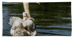Regal Cygnet Hand Towel
