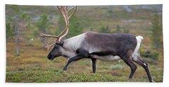 Reindeer Hand Towel by Aivar Mikko
