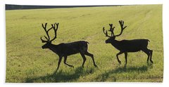 Reindeers On Swedish Fjeld Hand Towel