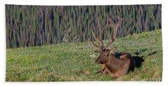 Relaxed Elk Bath Towel by John Roberts