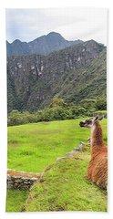 Relaxing Llama In Machu Picchu Bath Towel