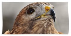 Rescued Hawk Hand Towel