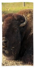 Resting Buffalo Bath Towel